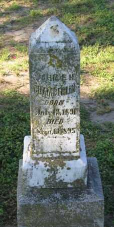 CHAMBERLIN, JOHNIE H. - Lawrence County, Arkansas | JOHNIE H. CHAMBERLIN - Arkansas Gravestone Photos