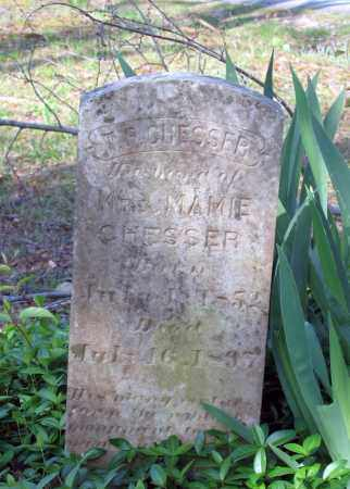 """CHESSER, THOMPSON P. """"T. P."""" - Lawrence County, Arkansas   THOMPSON P. """"T. P."""" CHESSER - Arkansas Gravestone Photos"""