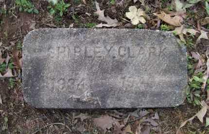 CLARK, SHIRLEY - Lawrence County, Arkansas | SHIRLEY CLARK - Arkansas Gravestone Photos