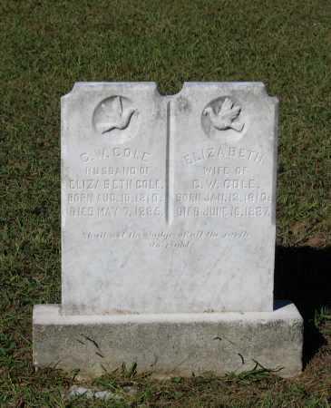 COLE, ELIZABETH - Lawrence County, Arkansas | ELIZABETH COLE - Arkansas Gravestone Photos