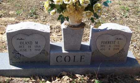 WEST COLE, FORREST L. - Lawrence County, Arkansas | FORREST L. WEST COLE - Arkansas Gravestone Photos