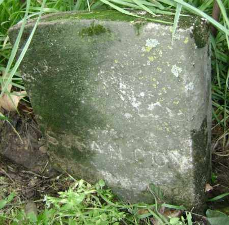 COY, SUSAN - Lawrence County, Arkansas   SUSAN COY - Arkansas Gravestone Photos