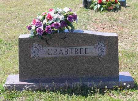 CRABTREE FAMILY STONE,  - Lawrence County, Arkansas |  CRABTREE FAMILY STONE - Arkansas Gravestone Photos