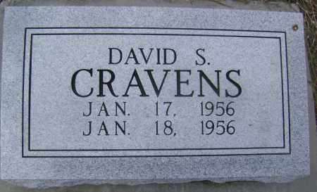 CRAVENS, DAVID STANLEY - Lawrence County, Arkansas | DAVID STANLEY CRAVENS - Arkansas Gravestone Photos
