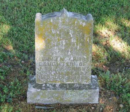 CRIBBS, CLEMMIE M. - Lawrence County, Arkansas | CLEMMIE M. CRIBBS - Arkansas Gravestone Photos
