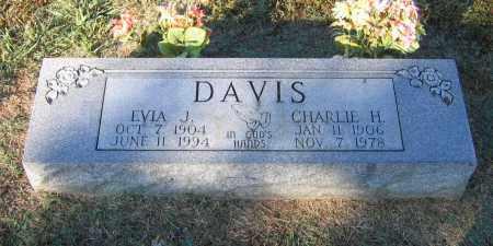 DAVIS, EVIA JANE - Lawrence County, Arkansas | EVIA JANE DAVIS - Arkansas Gravestone Photos