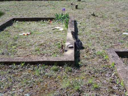 DAVIS, GEORGE WASHINGTON - Lawrence County, Arkansas | GEORGE WASHINGTON DAVIS - Arkansas Gravestone Photos