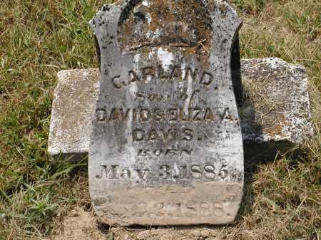 DAVIS, GARLAND BOLAYER - Lawrence County, Arkansas | GARLAND BOLAYER DAVIS - Arkansas Gravestone Photos