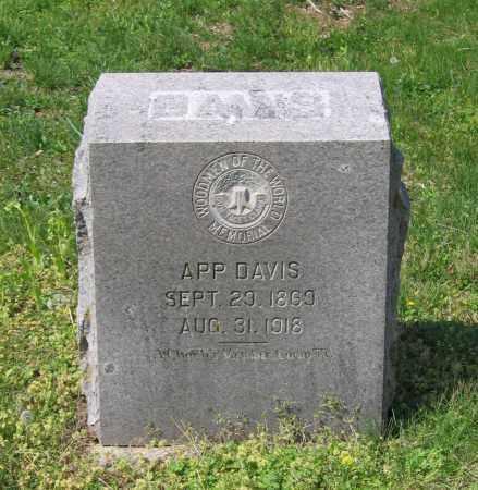 "DAVIS, JOHN A. ""APP"" - Lawrence County, Arkansas   JOHN A. ""APP"" DAVIS - Arkansas Gravestone Photos"