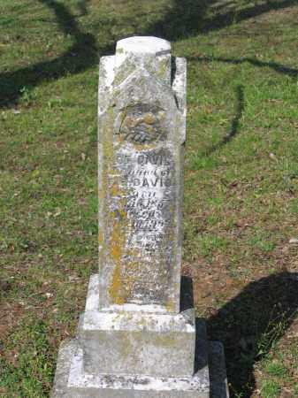 "DAVIS, JOHN LOTT ""LOT"" - Lawrence County, Arkansas   JOHN LOTT ""LOT"" DAVIS - Arkansas Gravestone Photos"
