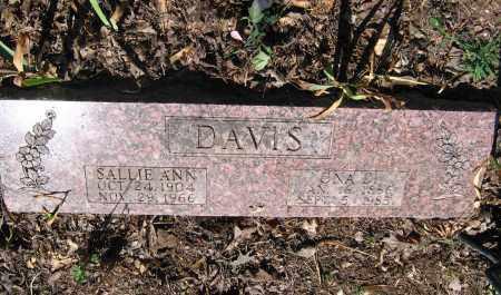 DAVIS, SALLIE ANN - Lawrence County, Arkansas | SALLIE ANN DAVIS - Arkansas Gravestone Photos