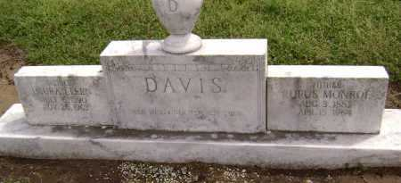 DAVIS, LAURA ELLEN - Lawrence County, Arkansas | LAURA ELLEN DAVIS - Arkansas Gravestone Photos