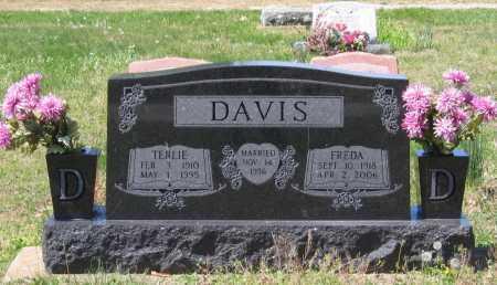 MCGHEHEY DAVIS, FREDA ETTA - Lawrence County, Arkansas | FREDA ETTA MCGHEHEY DAVIS - Arkansas Gravestone Photos
