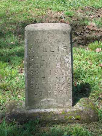 DAVIS, WILLIE M. - Lawrence County, Arkansas | WILLIE M. DAVIS - Arkansas Gravestone Photos