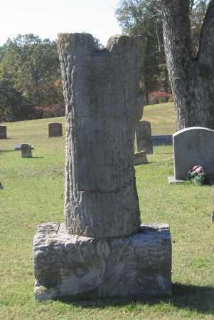 """DAWSON, WILLIAM DAVID """"W. D."""" - Lawrence County, Arkansas   WILLIAM DAVID """"W. D."""" DAWSON - Arkansas Gravestone Photos"""