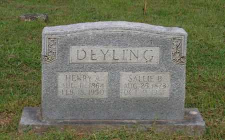 "BOTTOMS DEYLING, SARAH ""SALLIE"" - Lawrence County, Arkansas | SARAH ""SALLIE"" BOTTOMS DEYLING - Arkansas Gravestone Photos"