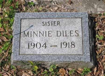 DILES, MINNIE - Lawrence County, Arkansas | MINNIE DILES - Arkansas Gravestone Photos