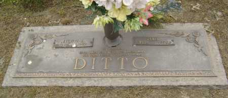 DITTO, PEARL - Lawrence County, Arkansas | PEARL DITTO - Arkansas Gravestone Photos
