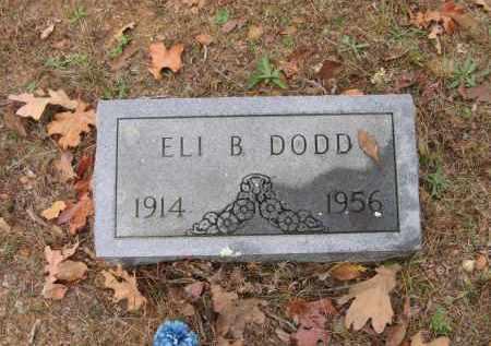 DODD, ELI B. - Lawrence County, Arkansas | ELI B. DODD - Arkansas Gravestone Photos