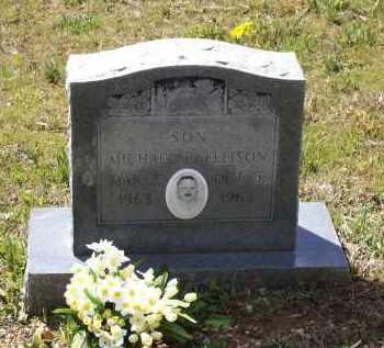 ELLISON, MICHAEL E. - Lawrence County, Arkansas | MICHAEL E. ELLISON - Arkansas Gravestone Photos