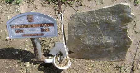 ELLISON, ZECHRITH H. - Lawrence County, Arkansas | ZECHRITH H. ELLISON - Arkansas Gravestone Photos