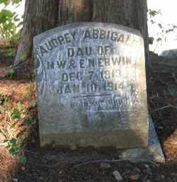 ERWIN, AUDREY ABBIGALE - Lawrence County, Arkansas | AUDREY ABBIGALE ERWIN - Arkansas Gravestone Photos