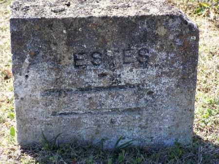 ESTES, UNKNOWN - Lawrence County, Arkansas | UNKNOWN ESTES - Arkansas Gravestone Photos