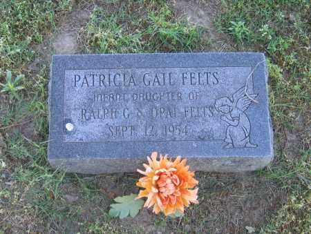 FELTS, PATRICIA GAIL - Lawrence County, Arkansas   PATRICIA GAIL FELTS - Arkansas Gravestone Photos