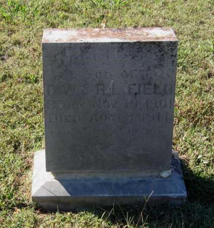 FIELD, CECIL O. - Lawrence County, Arkansas | CECIL O. FIELD - Arkansas Gravestone Photos
