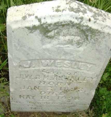 FINLEY, J. WESLEY - Lawrence County, Arkansas   J. WESLEY FINLEY - Arkansas Gravestone Photos