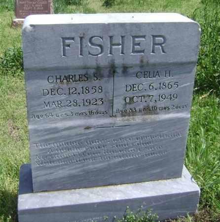 FISHER, CHARLES S. - Lawrence County, Arkansas   CHARLES S. FISHER - Arkansas Gravestone Photos