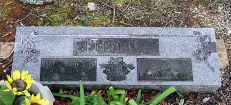 "FLEMING, JAMES ""JIM"" - Lawrence County, Arkansas | JAMES ""JIM"" FLEMING - Arkansas Gravestone Photos"