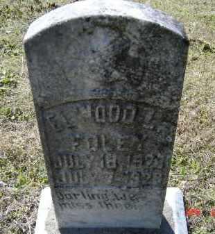 FOLEY, ELWOOD L. - Lawrence County, Arkansas | ELWOOD L. FOLEY - Arkansas Gravestone Photos