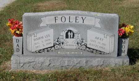 "FOLEY, HIRAM LEE ""HAIRM"" - Lawrence County, Arkansas | HIRAM LEE ""HAIRM"" FOLEY - Arkansas Gravestone Photos"