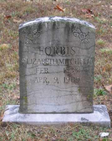 MITCHELL FORBIS, ELIZABETH - Lawrence County, Arkansas | ELIZABETH MITCHELL FORBIS - Arkansas Gravestone Photos