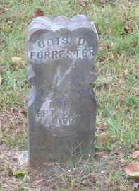 FORRESTER, ODIS D. - Lawrence County, Arkansas   ODIS D. FORRESTER - Arkansas Gravestone Photos