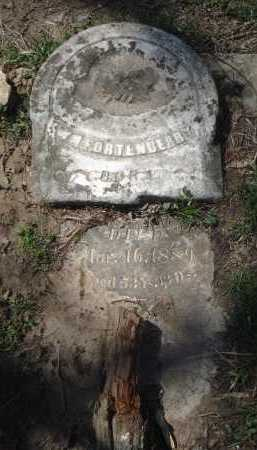 FORTENBERRY, WILLIAM M. - Lawrence County, Arkansas | WILLIAM M. FORTENBERRY - Arkansas Gravestone Photos