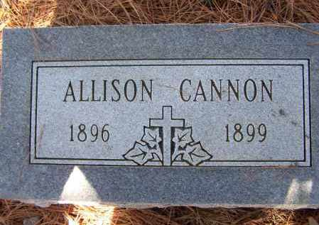 FRIZZELL, ALLISON CANNON - Lawrence County, Arkansas | ALLISON CANNON FRIZZELL - Arkansas Gravestone Photos