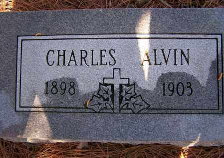 FRIZZELL, CHARLES ALVIN - Lawrence County, Arkansas   CHARLES ALVIN FRIZZELL - Arkansas Gravestone Photos