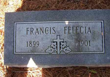 FRIZZELL, FRANCIS FELICIA - Lawrence County, Arkansas | FRANCIS FELICIA FRIZZELL - Arkansas Gravestone Photos