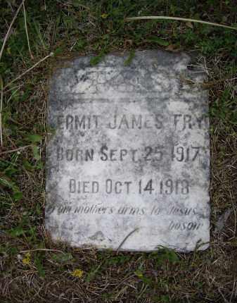 FRY, KERMIT JAMES - Lawrence County, Arkansas | KERMIT JAMES FRY - Arkansas Gravestone Photos