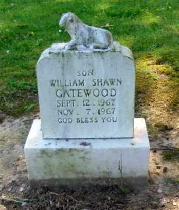 GATEWOOD, WILLIAM SHAWN - Lawrence County, Arkansas | WILLIAM SHAWN GATEWOOD - Arkansas Gravestone Photos
