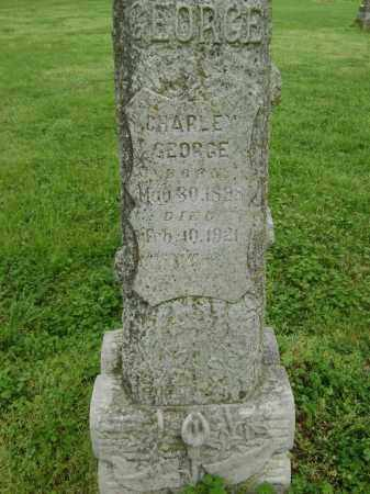 GEORGE, CHARLEY - Lawrence County, Arkansas | CHARLEY GEORGE - Arkansas Gravestone Photos