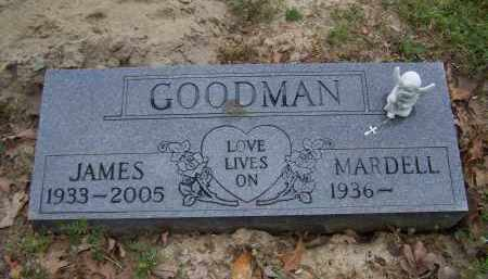 GOODMAN, JAMES SHELBY - Lawrence County, Arkansas | JAMES SHELBY GOODMAN - Arkansas Gravestone Photos