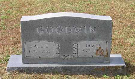 GOODWIN, JAMES - Lawrence County, Arkansas | JAMES GOODWIN - Arkansas Gravestone Photos