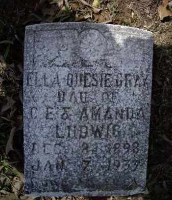 LUDWIG GRAY, ELLA ODESIE - Lawrence County, Arkansas | ELLA ODESIE LUDWIG GRAY - Arkansas Gravestone Photos