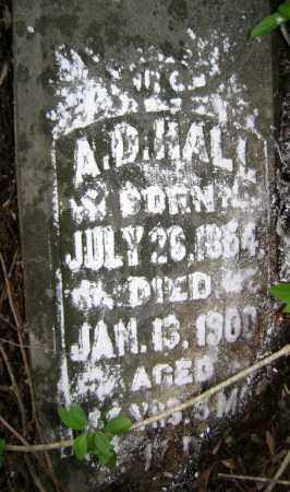 HALL, A. D. - Lawrence County, Arkansas | A. D. HALL - Arkansas Gravestone Photos