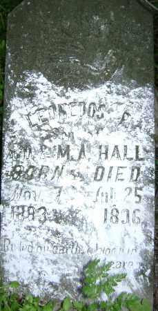 HALL, LEONEDOS L. - Lawrence County, Arkansas | LEONEDOS L. HALL - Arkansas Gravestone Photos
