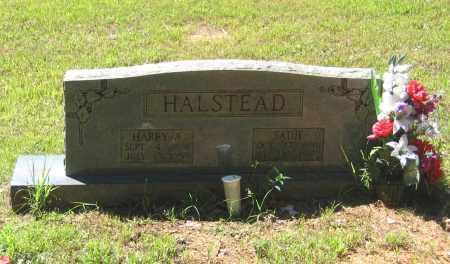 "HALSTEAD, HARVEY ALEXANDER ""HARRY"" - Lawrence County, Arkansas | HARVEY ALEXANDER ""HARRY"" HALSTEAD - Arkansas Gravestone Photos"