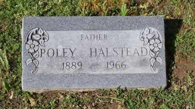 "HALSTEAD, NAPOLEON ""POLEY"" - Lawrence County, Arkansas | NAPOLEON ""POLEY"" HALSTEAD - Arkansas Gravestone Photos"